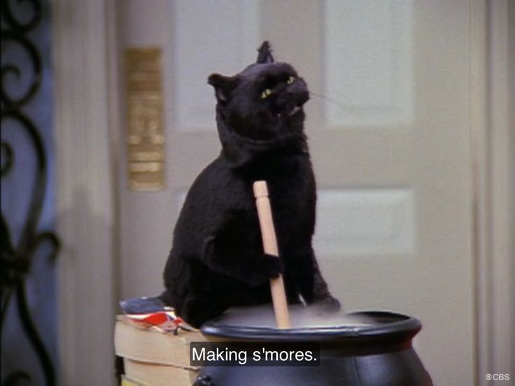 Pin by Anthony Pena on Sabrina the Teenage Witch ...