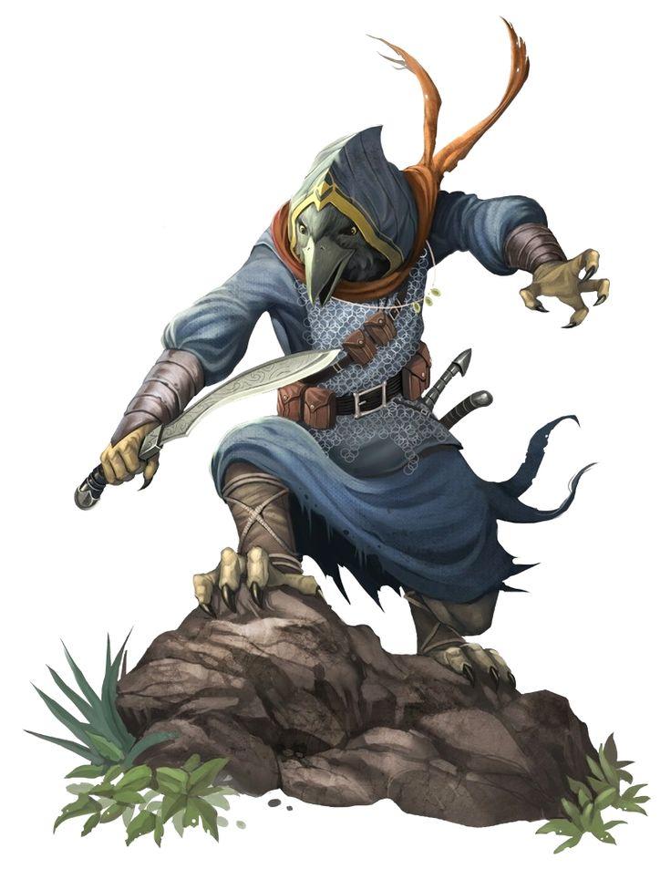 Male Tengu Rogue - Pathfinder PFRPG DND D&D d20 fantasy