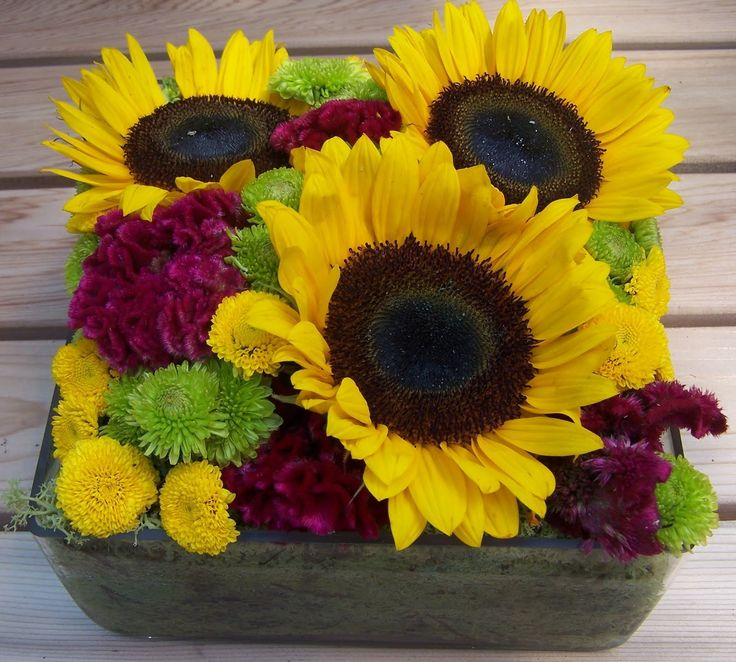 Love this pave arrangement of sunflowers, celosia and mums! Just insert into a soaked block of Oasis.