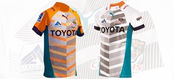 Toyota Cheetahs | Fan Zone