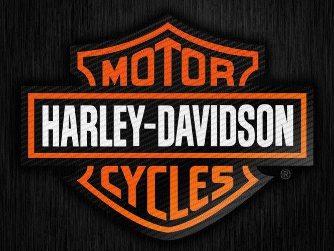 Placa Decorativa de Metal 30x40cm - Harley Davidson  - Nova Coleção