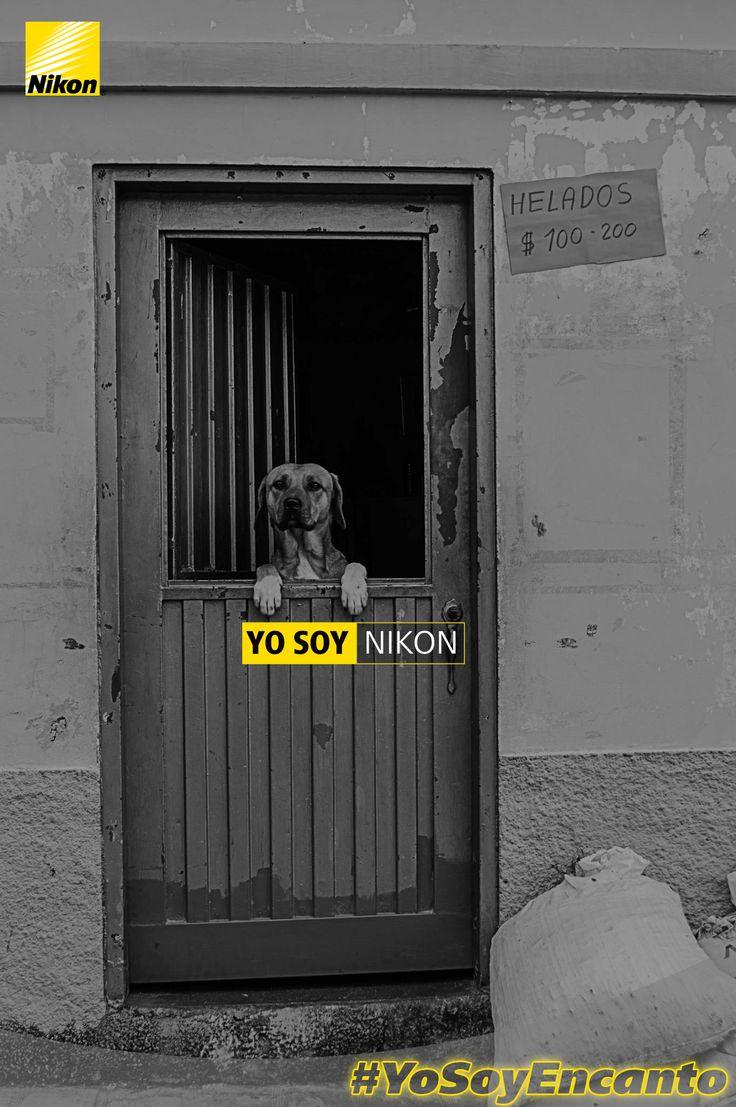 Juan Francisco Marulanda Alvarez #YosoyNikon #YoSoyEncanto
