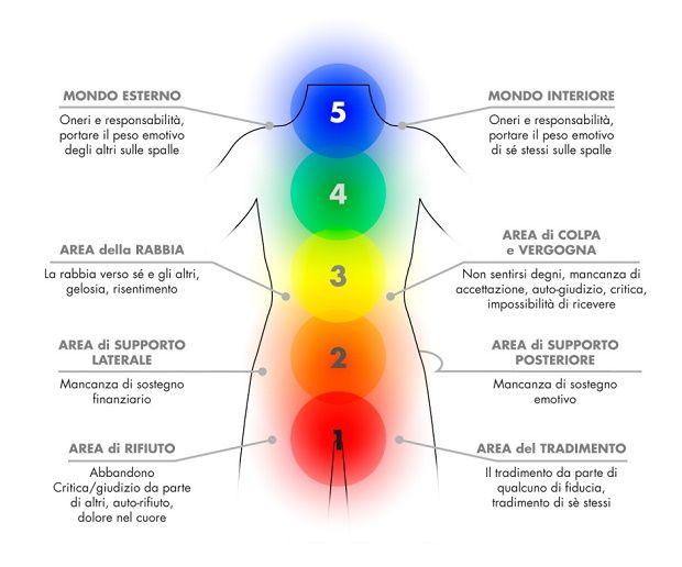 Qualsiasi evento psichico si manifesta a livello corporeo attraverso tensioni muscolari e somatiche, in seguito alla costruzione di difese di fronte ad emozioni spiacevoli o incontrollate. Questa corrispondenza tra mente e corpo dà l'avvio alla formazione dei tratti caratteriali e e a vissuti emozionali che si esprimono nella forma, mobilità e rigidità del corpo. La …