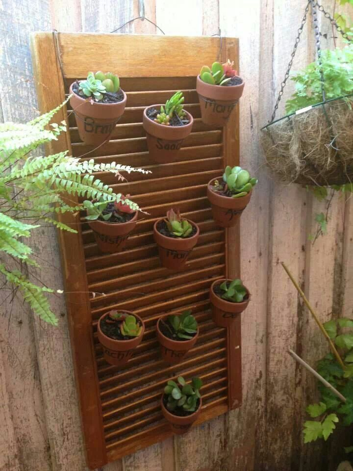 Nice vertical garden
