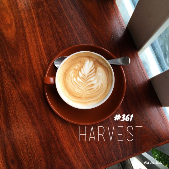 Harvest. Byron Bay. 365 coffees. 365 cafes. 365 days.