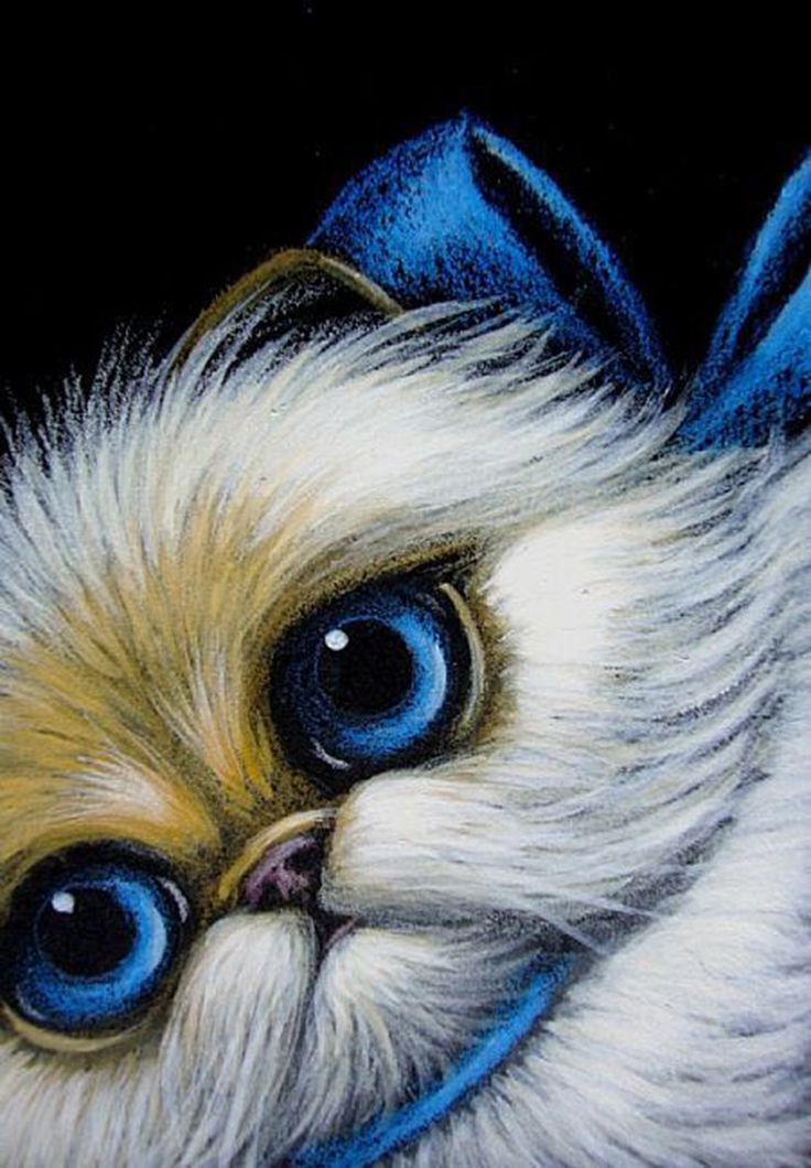 Cat Art...=^. ^=... ❤...Himalayan Persian Cat and Blue Bow by Artist Cyra R. Cancel...