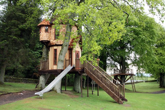 the tree house in the UK