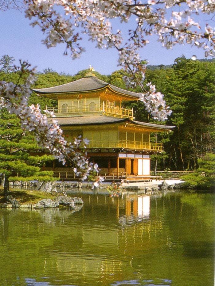 Nara, Japan – beautiful area!