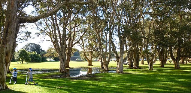 Centennial Park - for whiling away those lazy sunday afternoons