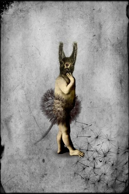 @Finkiyaya this strange little creature belong on one of yr boards !  Who am I | Catrin Welz-Stein