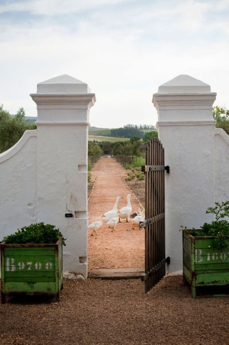Southafrica, Dreams, Garden Gates, Capes Town, South Africa, Vegetables Gardens, Gardens Gates, House Numbers, Planters Boxes