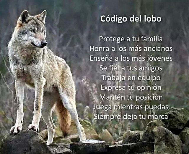 Código Lobo en una manada | El Código Lobo en una manada par… | Flickr