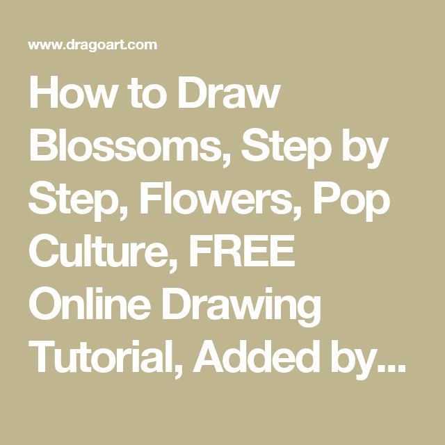 How to Draw Blossoms, Step by Step, Flowers, Pop Culture, FREE Online Drawing Tutorial, Added by Dawn, May 21, 2011, 4:30:23 pm