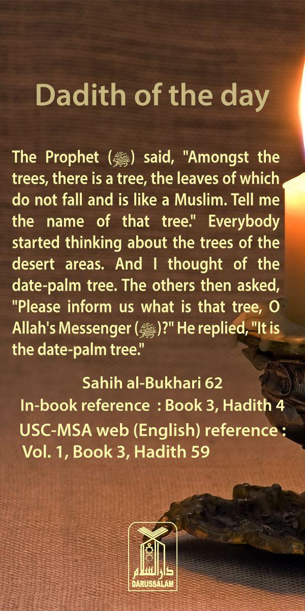Template talk:Hadith USC - Wikipedia