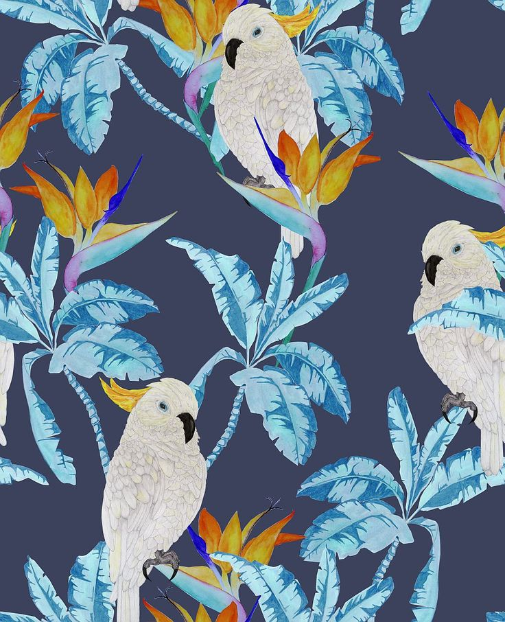 This has a stunning electric blue that will bring out the blue of the stained glass and also the cockatoo element will compliment the window shape well. Cockatoo Blue wallpaper by Graduate Collection