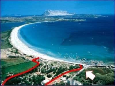 """Camping San Teodoro La Cinta - Sardegna. Situato al centro di un vasto parco, di fronte alla bellissima spiaggia vastissima e dalla sabbia bianca de """"La Cinta"""" a 25 Km a sud del Porto e Aeroporto di Olbia (OT) e a 800 metri dal centro di San Teodoro (OT)."""