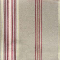 Victorian stripe-Fuschia