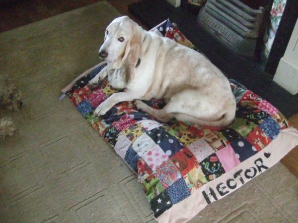 Handmade Personalised Patchwork Dog bed quilt liner ideal for sofa car cage cute #Handmade