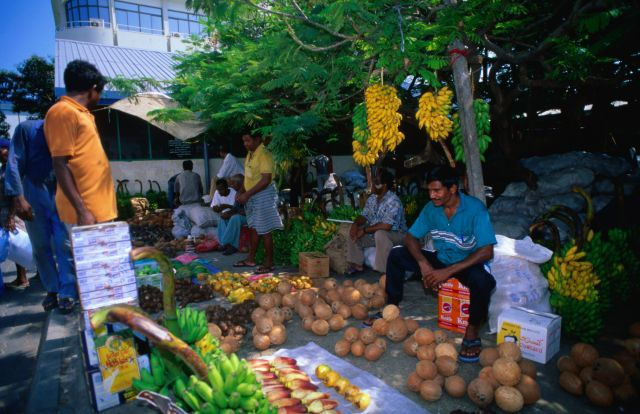 (Getty Creative) Ten Things To Do In The Maldives: Check out Male market (The markets of Male are a joy for the senses. The fish market is fascinating: if you're lucky you'll see the hammerhead sharks and huge tuna that have been caught that day. The colourful vegetable market next door is also well worth a visit. The betel leaves, areca nuts and white lime on sale here combine to give the only legal intoxication in the Maldives.)