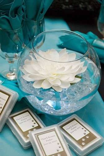 lit and teal and elegant