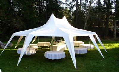 All About Parties - party rental supplies in the greater Olympia ...