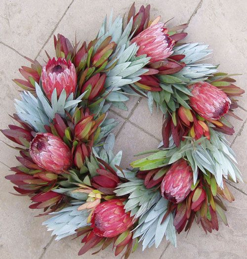 Silver tree and red Leucadendron's set off the Pink of the protea in this colorful wreath - Different - could be used as a table center piece.