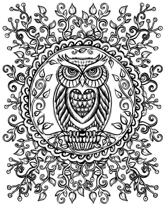 431 best coloring owl images on Pinterest Owls Coloring and