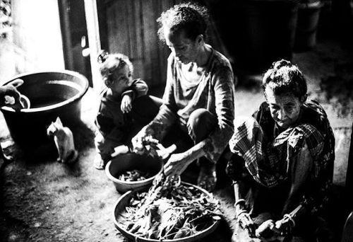 Joel Benguigui |  BACK HOME ()  Maria vit avec sa mère à Larantuka. Elle est employée agricole. Elle travaille pour rapporter de quoi manger. Elle n'a quasiment pas de salaire. Tout juste de quoi offrir un cadre de vie décent à sa petite fille Clarita.   : @s_t_o_r_i_e_s__ Avec un appareil Leica M3 monté dun Summilux 50mm f1.4 Récit : Joel Benguigui  #LeicaCameraFrance #Leica_world #Indonesia #travelphotographer #wanderer #explorer #Portrait #makeportrait #artofvisuals #visualsgang #travel…