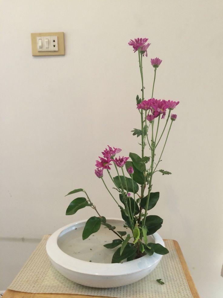 My Flower Arrangement Of Ikebana Ikebana Pinterest