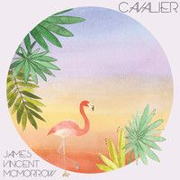 This man has got tunage down to a science! James Vincent McMorrow - Cavalier by James Vincent McMorrow on SoundCloud.