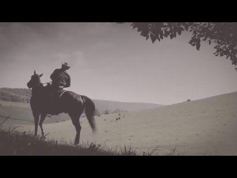 Pin Auf Pferdetraining