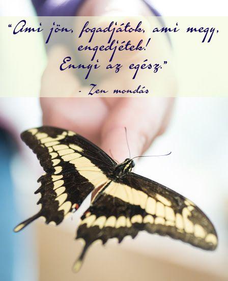 Határozd el,Az élet útja kétes és nehéz,Sírj csak hegedű,Ne várj nagy dolgot....,Ami jön ,fogadjátok,Minél több haragot cipelsz,Jövőd álmaidtól függ,Olyan gond nincs,Ott halássz,Szabaddá ész tesz, - klementinagidro Blogja -   Ágai Ágnes versei ,  Búcsúzás,  Buddha idézetek,  Bölcs tanácsok  ,  Embernek lenni ,  Erdély,  Fabulák,  Különleges házak  ,  Lélekmorzsák I.,  Virágkoszorúk,  Vörösmarty Mihály versei,  Zenéről, A Magyar Kultúra Napja-Jan.22, Anthony de Mello…