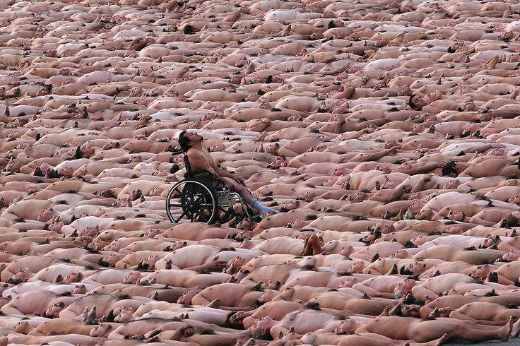 Spencer Tunick - photographs of nude bodies lying down, surrounding man in wheelchair