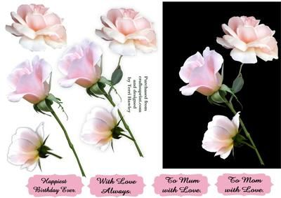 3 beautiful roses for you on Craftsuprint - Add To Basket!