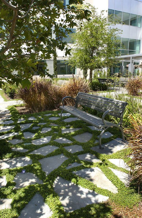 """The desire for sustainability and the focus on landscaped """"rooms"""" created unique opportunities to provide a corporate client with spaces more reminiscent of a private garden. Here, broken concrete from the tilt-up building's casting slabs were recycled as decorative paving, while also contributing to the projects LEED® Gold certificate (photo: Cris Costea)."""