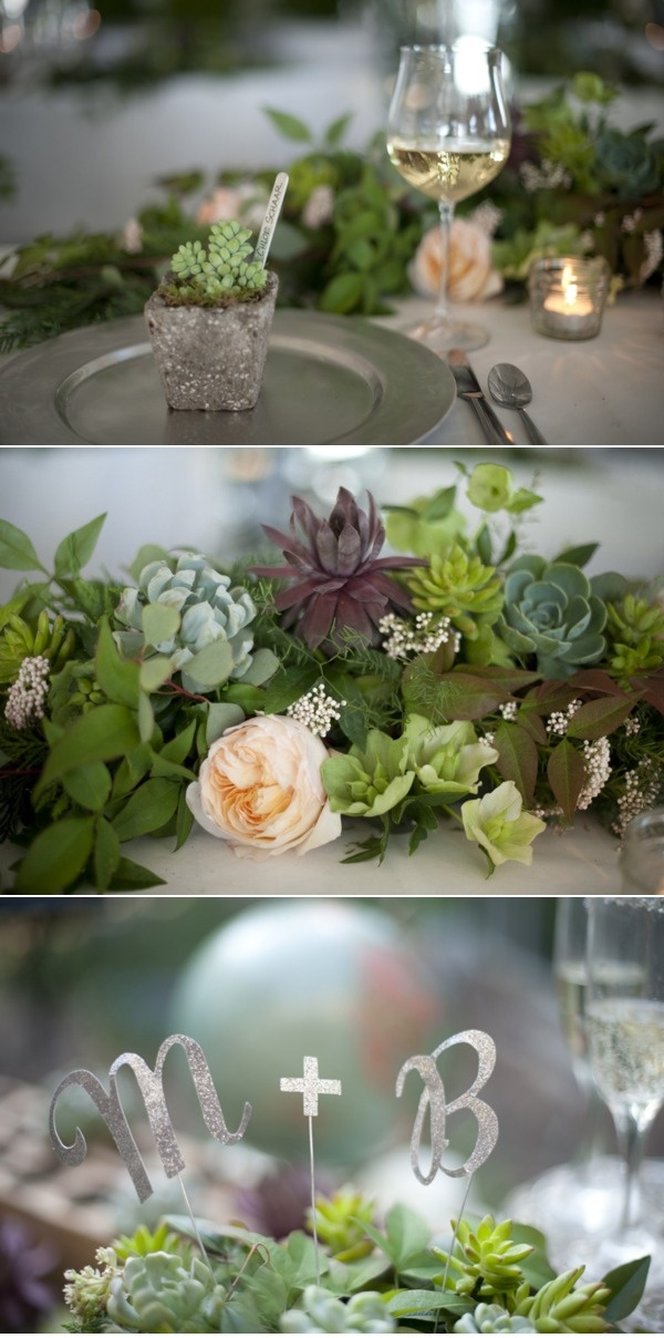 Succulents with soft peach garden roses or peonies