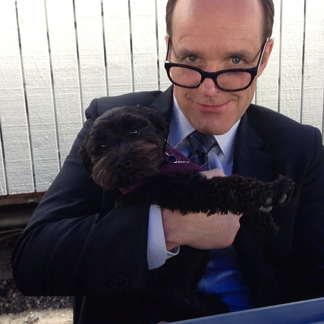 this is phil coulson and a puppy. if you don't repin, we can't be friends.