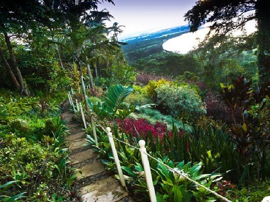 the summit Gardens  port vila, efate, vanuatu