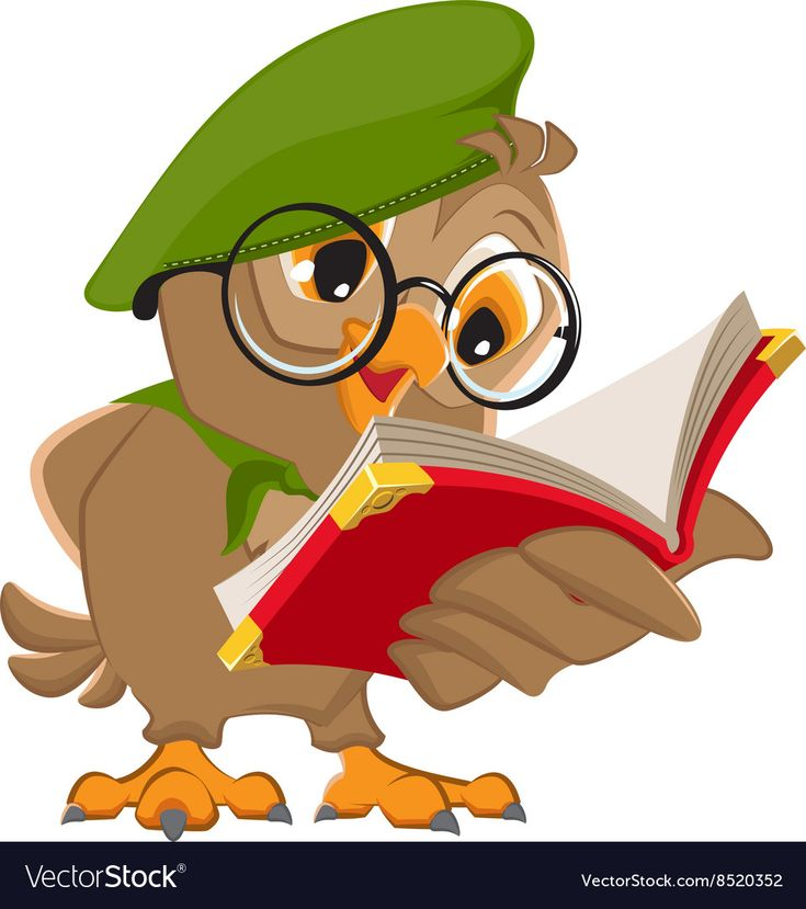 Owl reading book scout vector image on   Artes, Coruja ...