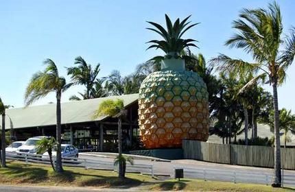 """Big Pineapple Residential developers are expected to snap up the 34-year-old tourist attraction which, in addition to the giant fruit, features 80 hectares of prime real estate on Queensland's Sunshine Coast hinterland. The Big Pineapple agricultural tourist attraction is one of Australia's oldest """"big things"""", second only to the Big Banana in Coffs Harbour, New South Wales."""