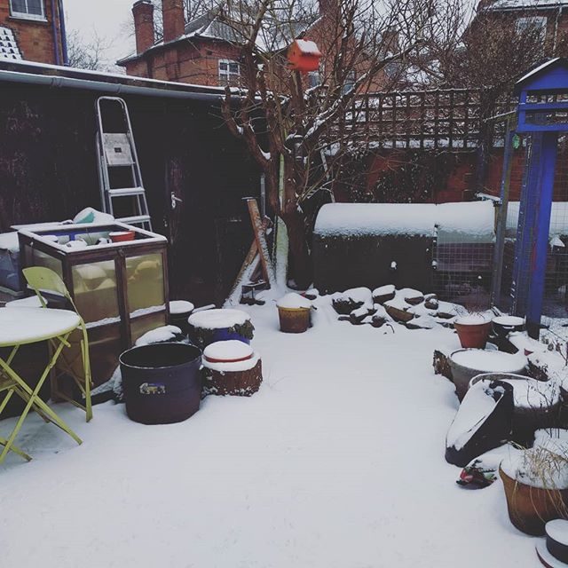 Day 2 @joannehawker #marchmeetthemaker I'm on a roll...... this is the view this morning from my back door to workshop no. 2 in Leicester UK. I didn't want to spoil the snow so shut the door again! One workshop for sewing one for lasting oh and the spare room for cutting and an understanding husband who lucky supports me in all my crazy shoe adventures.