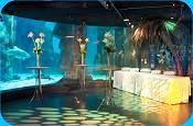 London Aquarium #londonvenues #londonevents #londonvenues #events #eventprofs #richmondcaterer