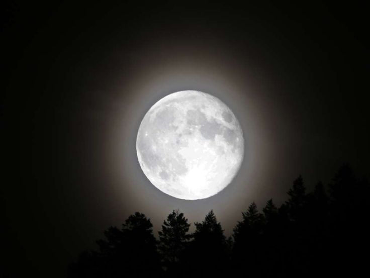 Supermoon Appears Big And Bright In Night Sky - George Frey/Getty Images