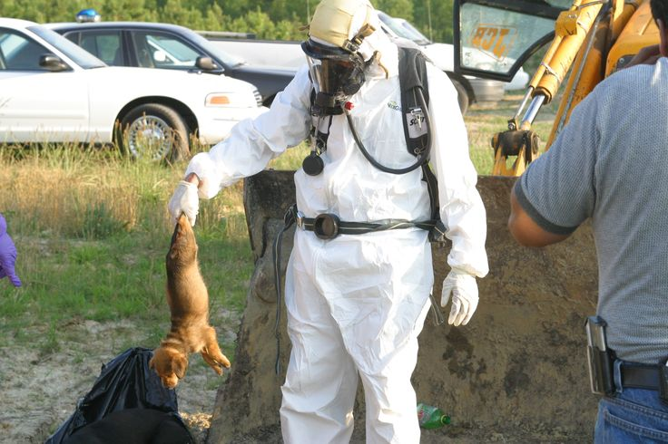 PETA KILLS !!  I will never support PETA while they murder thousands of dogs and cats every year. MY WORLD IS VEGAN !!