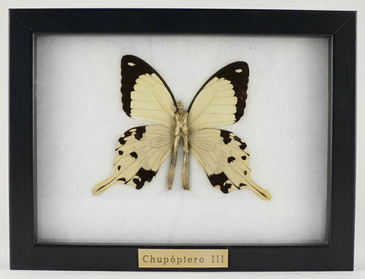 """""""Chupóptero III"""" Bronce y mariposa real (13x18m) Laura Salguero"""