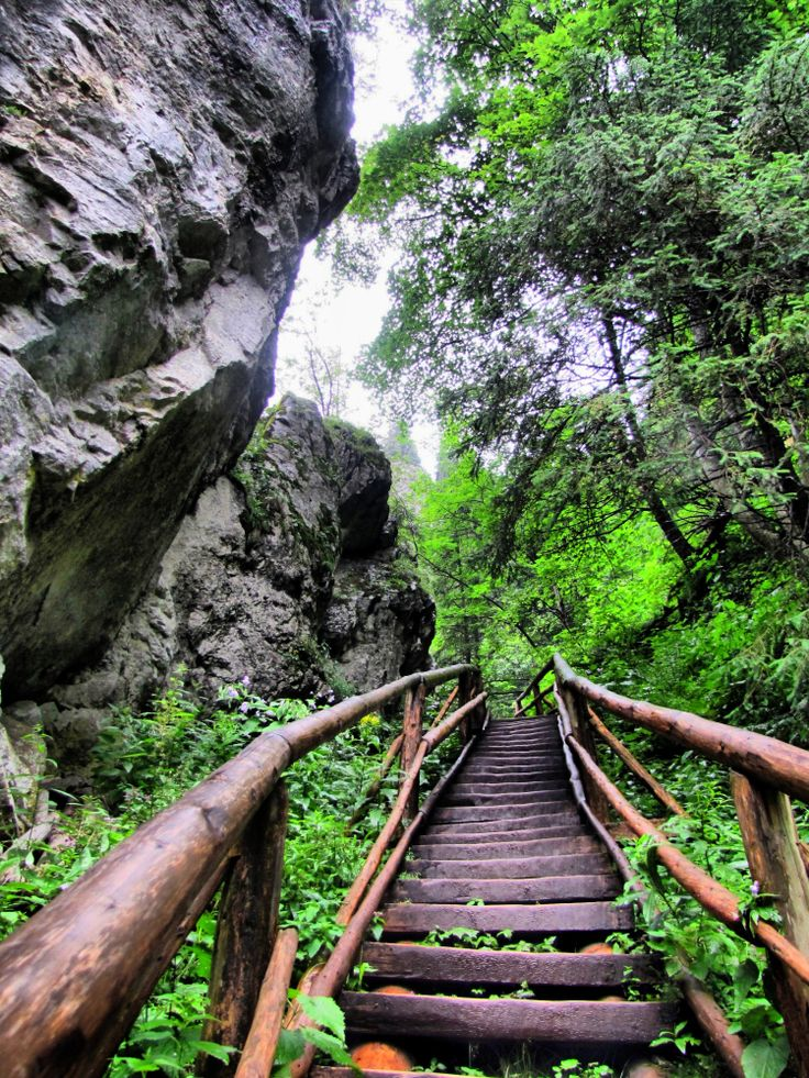 Dolina Kościeliska - Wyjście z Jaskini Mroźnej http://tam-gdzie-swieci-slonce.blogspot.com/2013/07/dolina-koscieliska.html
