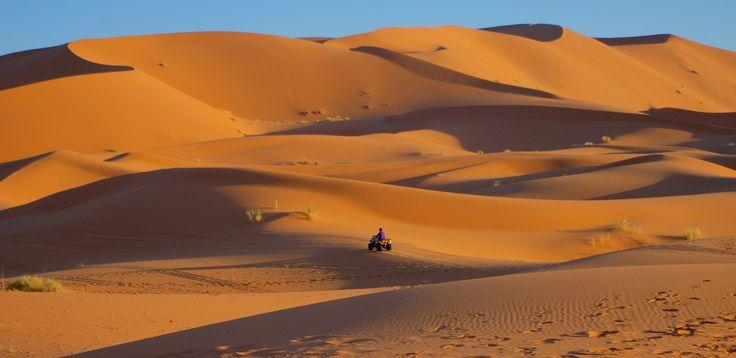 one in desert - travel in desert - Merzouga ,,