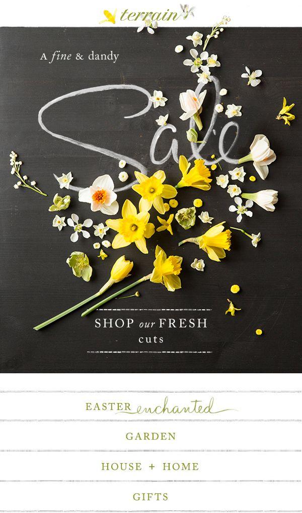 A fine + dandy springtime #sale at #shopterrain March 24