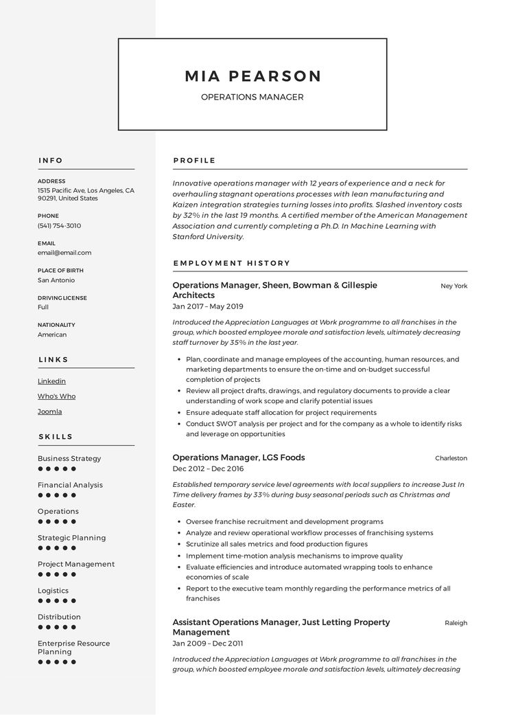 Professional Operations Manager Resume, template, design