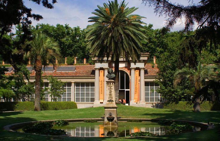 Madrid- Botanical Garden (Real Jardin Botanico) Next to the Thyssen